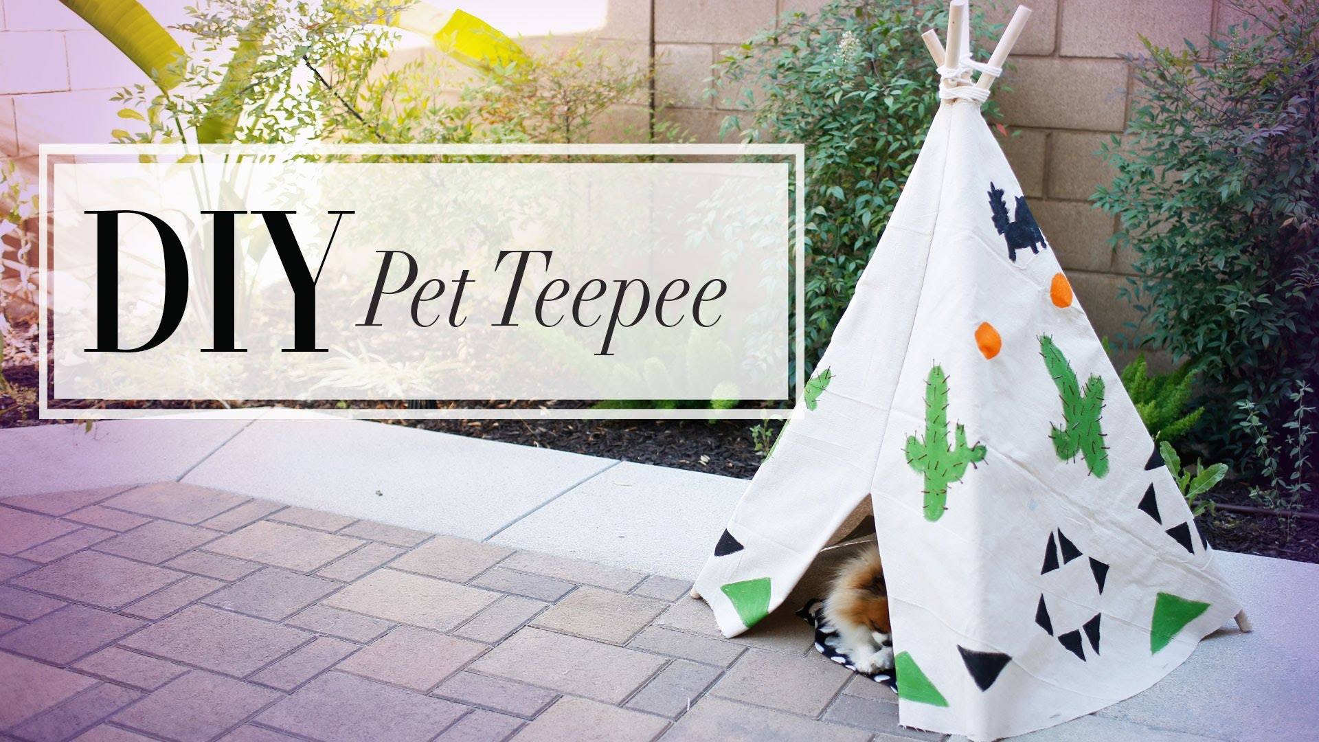 Related: Bring A Little Bit Of Whimsy Into Your Pup's Life With This DIY Dog Teepee