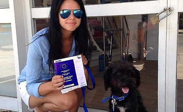 Related: Woman Flies Thousands Of Miles To Adopt The Courageous Stray Dog Who Saved Her Life